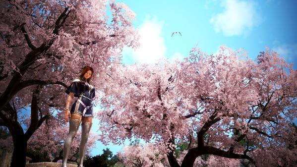 黒い砂漠 ダークナイト 桜並木