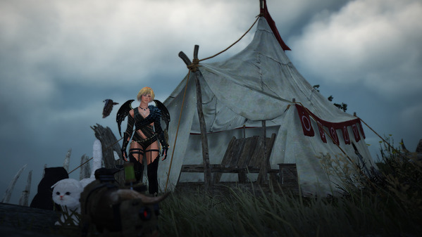 黒い砂漠 キャンプ