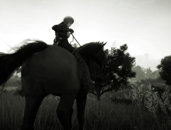 BlackDesert Valkyrie horse