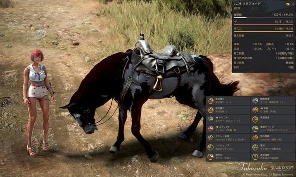 黒い砂漠 5世代馬