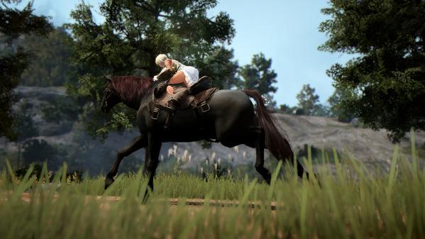 黒い砂漠 馬 調教