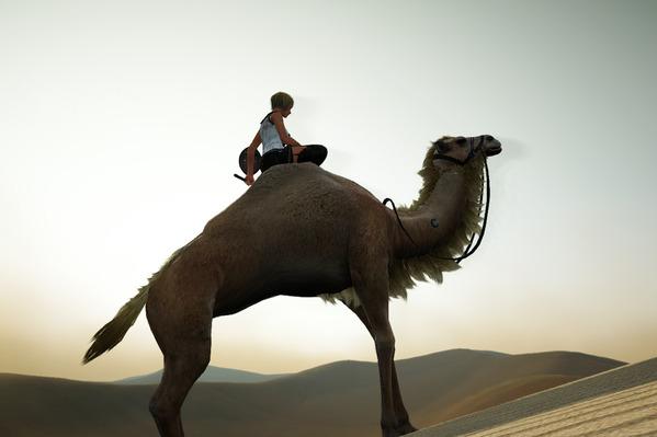 黒い砂漠 ラクダ BlackDesert Camel
