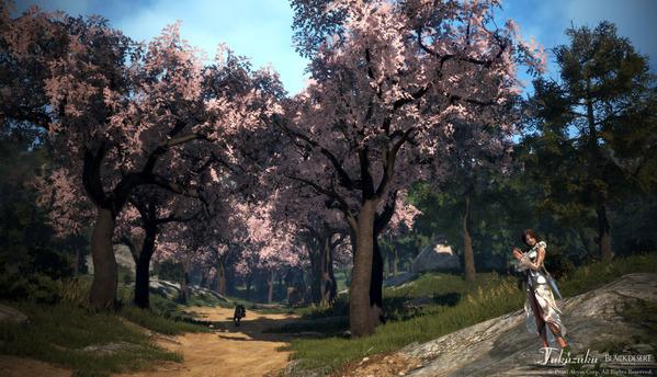 黒い砂漠 ウィッチ 桜