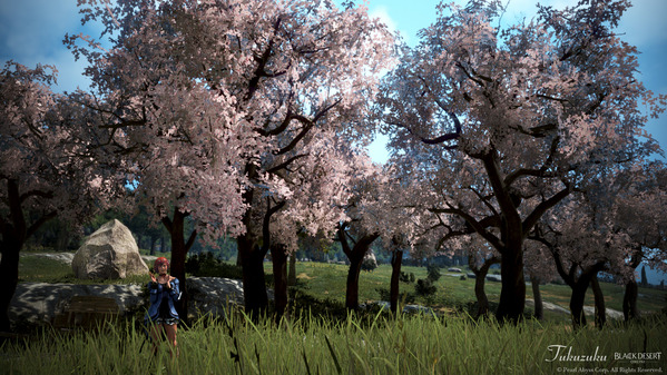 黒い砂漠 ヴァルキリー ハイデルマスカレード衣装 桜