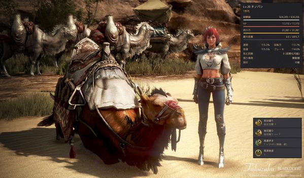 黒い砂漠 濃い茶色ラクダ 調教