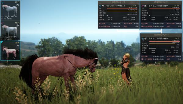 黒い砂漠 馬 交配 4世代馬
