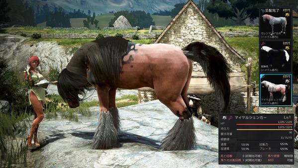 黒い砂漠 交配 6世代馬