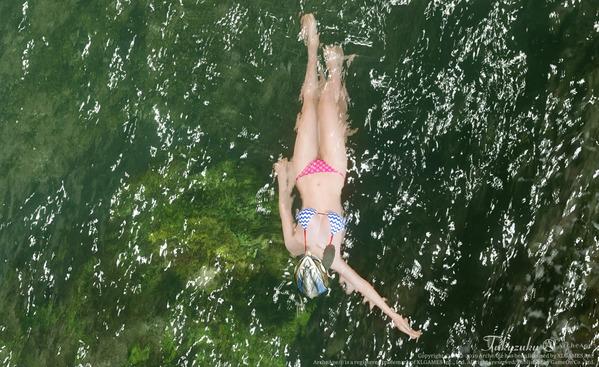ArcheAge エルフ 水着 ロカ川