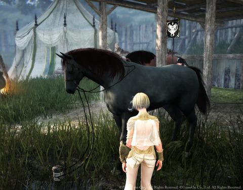 黒い砂漠  シャルルネ衣装 野生馬