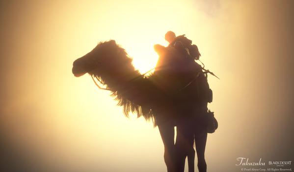 黒い砂漠 ラクダ