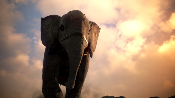 黒い砂漠 荷車象
