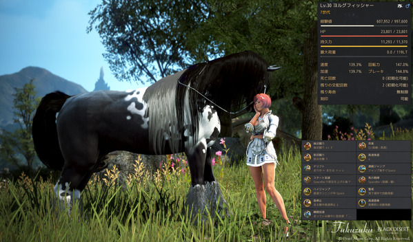 黒い砂漠 ヴァルキリー 7世代馬