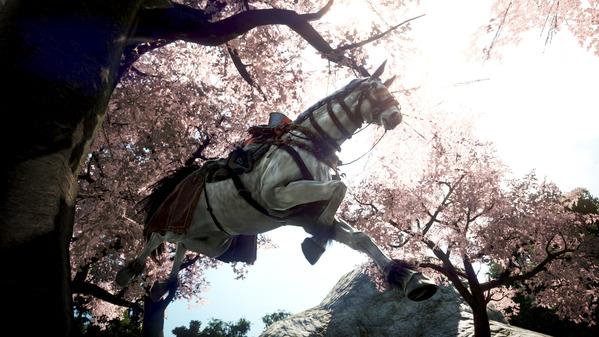 黒い砂漠 馬 桜