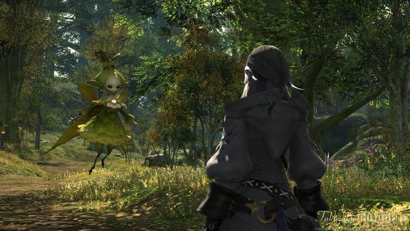 FF14 黒衣森:東部森林