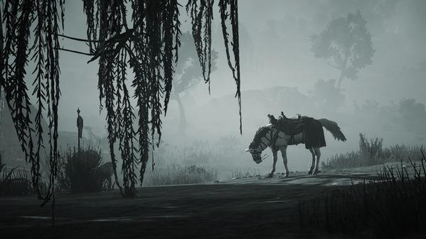 黒い砂漠 白馬