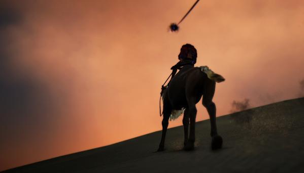 黒い砂漠 ラクダ ソーサレス