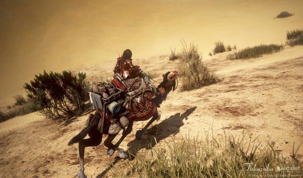黒い砂漠 ノヴァ バレンシア大砂漠
