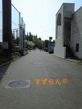 871b7f1a.jpg