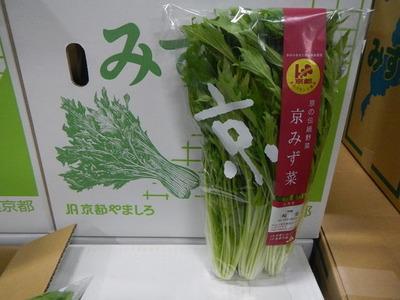 170212京野菜4