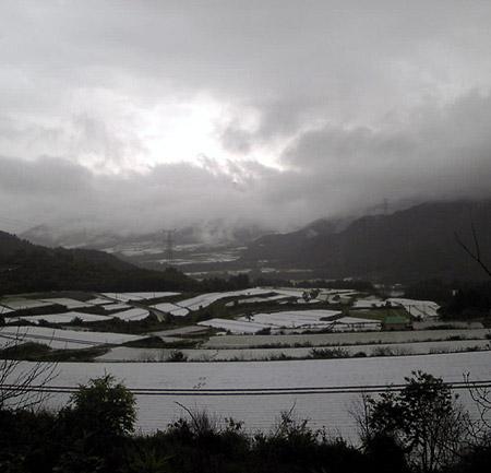 川上村風景