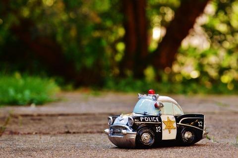 police-970012_960_720