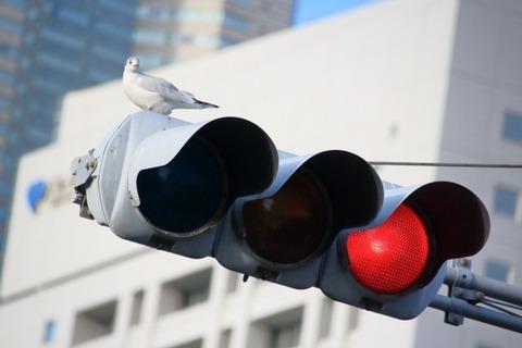 超絶ブラック運送業界、信号待ちや渋滞は休憩扱い