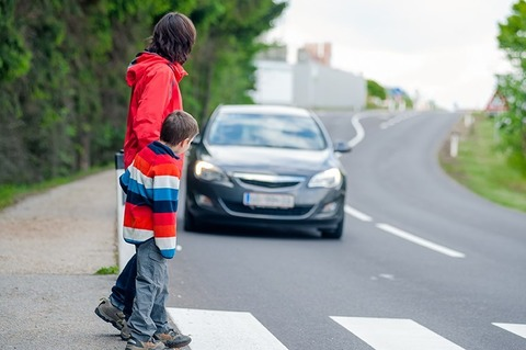 歩行者が横断歩道渡ろうとしてる