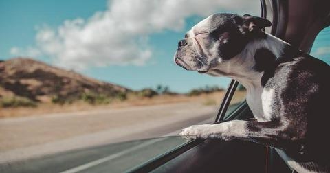 一人で車で出かける