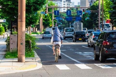 車道走ってる自転車邪魔