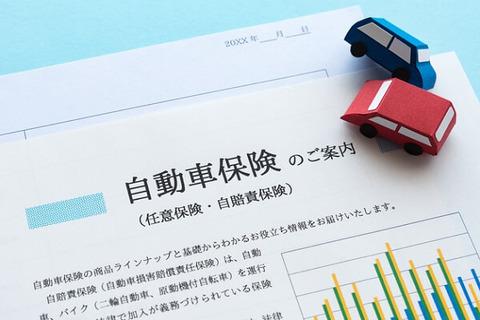 任意自動車保険月額5000円なんだが??