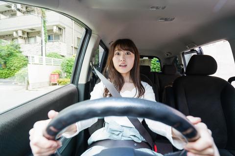 車通勤ワイ「にゃーん!にゃーん!」←これwwwwwww