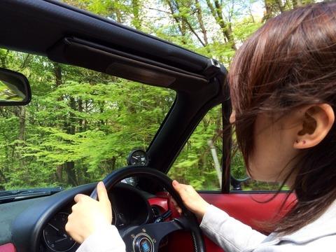 女の車の運転