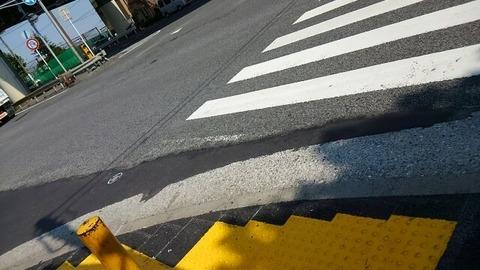 ワイ「横断歩道渡ったろ!あ、車がきてるよw…せや!」