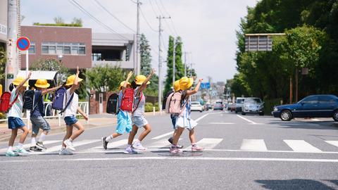 日本の横断歩道