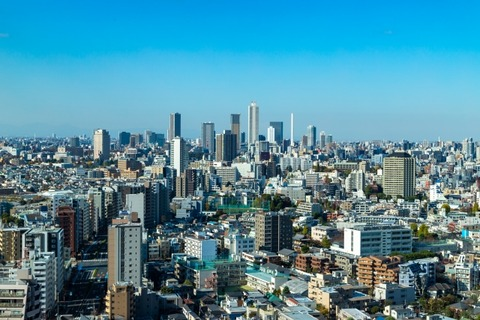 年収いくらあれば東京で車
