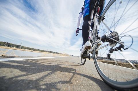 ワイ自転車旅大臣、高速道路を自転車専用道へ