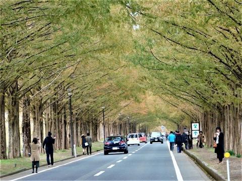 車で琵琶湖一周