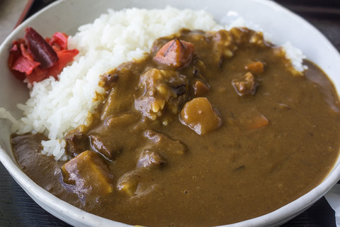 motobu_gyucurry