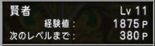 賢者Lv11