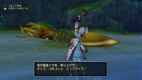 釣り_魚子黄金イカ