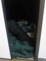 押入れで眠る野田さん