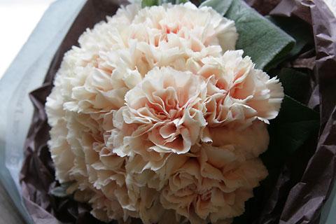 母の日にこの花
