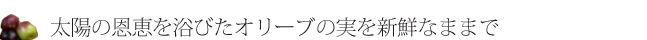 ttle_color02