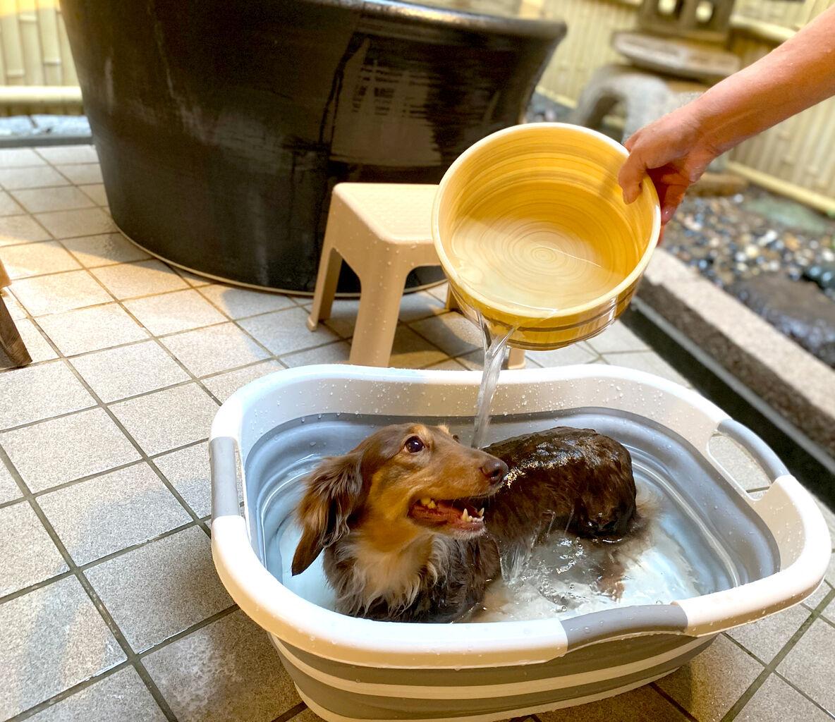 wanwanresort.bath