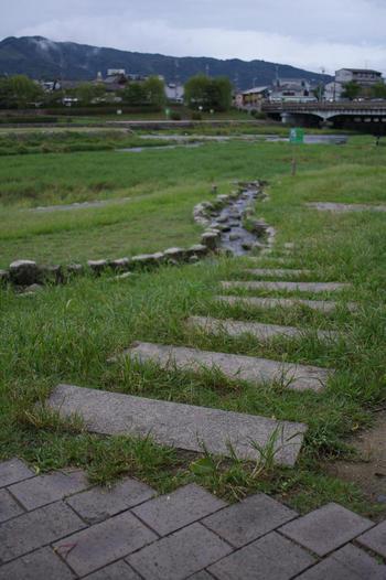 加茂鴨の川