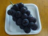 grape181