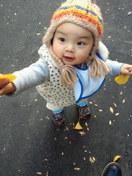 イチョウの葉をくれる姫