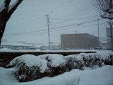 おいおい!! 吹雪いちゃってるよ!!!