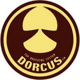 DORCUS