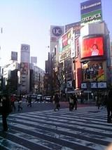 コンクリートジャングル東京